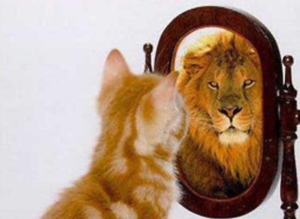 I want confidence