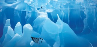 I WANT to experience the Antarctic